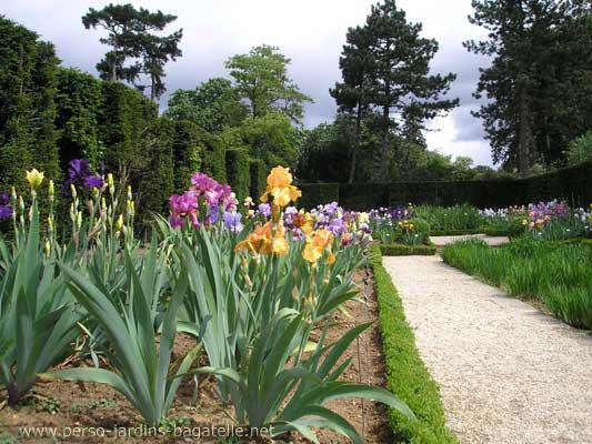 Le jardin des iris for Piscine iris jardin